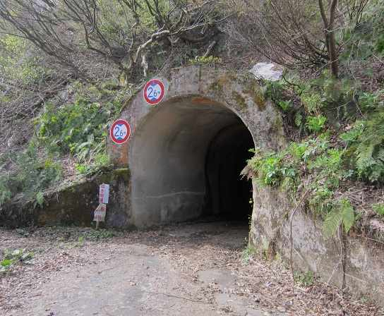 yanagisawatunnel07.jpg