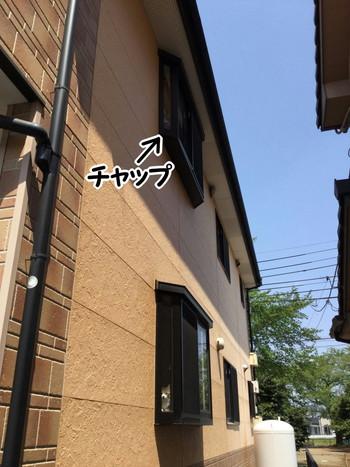 IMG_5813-1.jpg