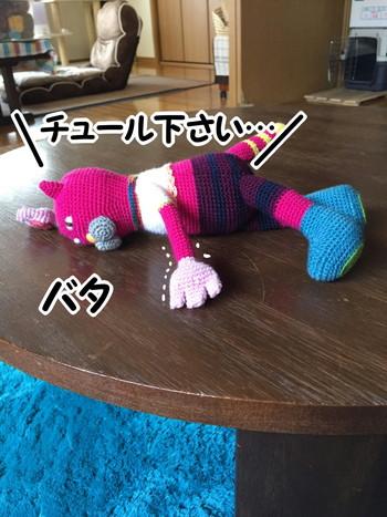 S_6207759048478.jpg