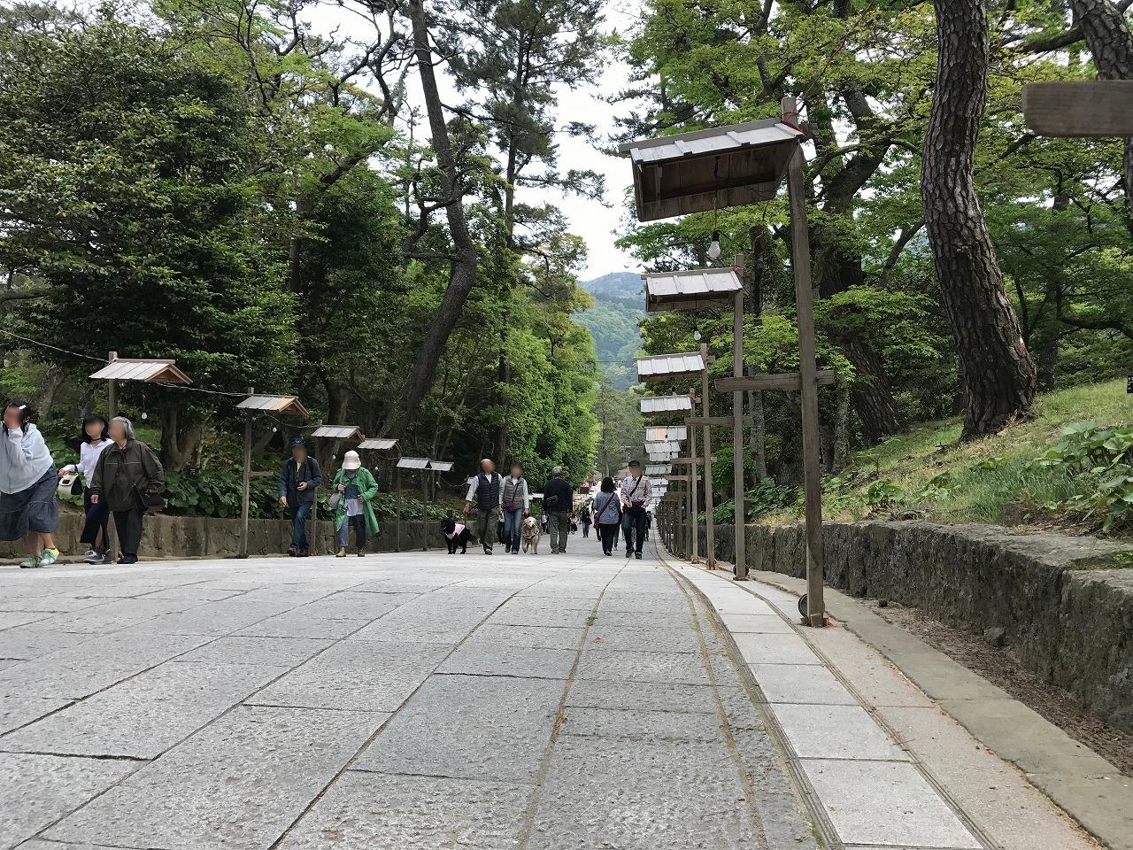 20170503-IzumoTaisha-I25.jpg