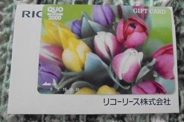 DSC02306.jpg