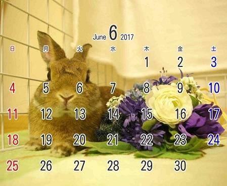 2017年6月卓上カレンダー