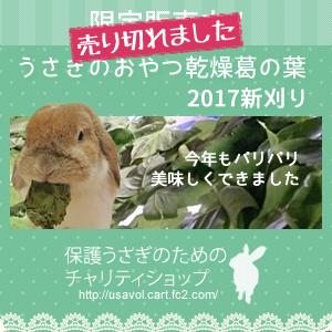 kuzuno-ha2017-.png