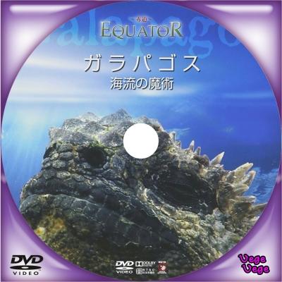 EQUATOR ~赤道~ ガラパゴス 海流の魔術