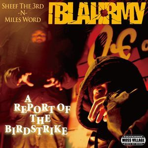 BLAHRMY : A REPORT OF THE BIRDSTRIKE