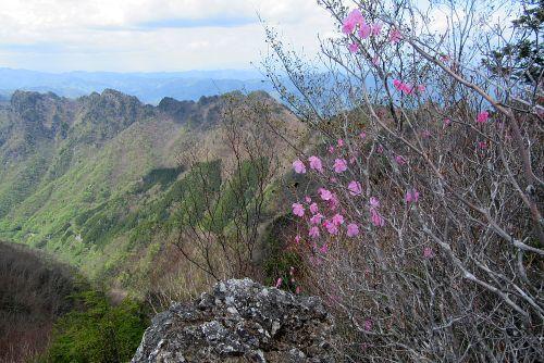 岩場とアカヤシオ
