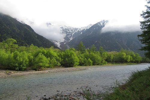 梓川とケショウヤナギ