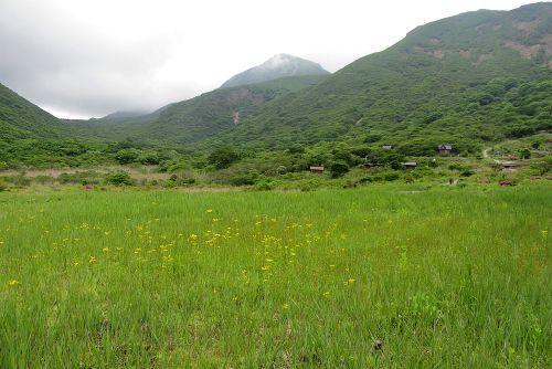 坊ガツル湿原