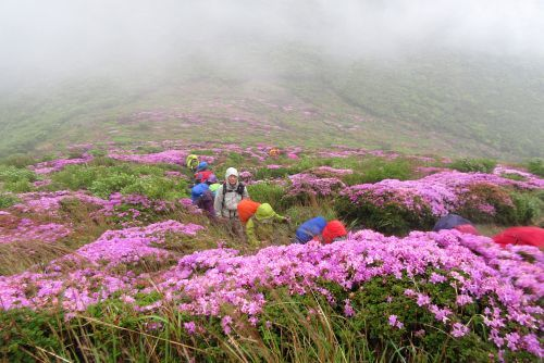 平治岳への登り