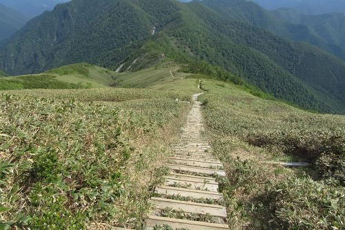 山の家への階段道
