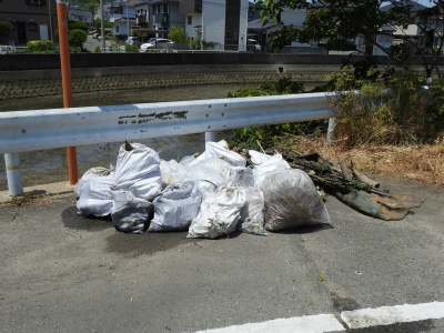 8河口のゴミ