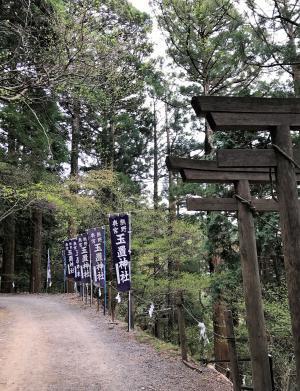 玉置神社のぼり