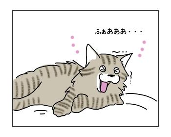 03062017_cat1mini.jpg