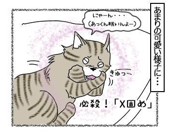 04072017_cat3mini.jpg