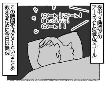 05072017_cat1mini.jpg