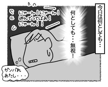 05072017_cat2mini.jpg