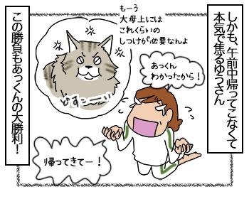 05072017_cat4mini.jpg