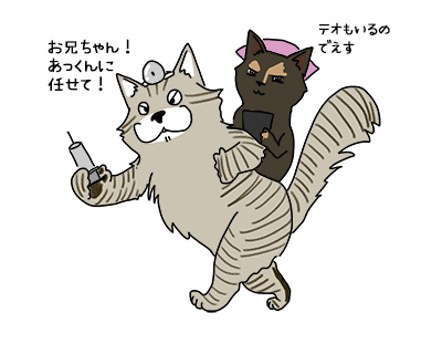 06072017_cat1mini.jpg