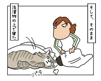 07062017_cat2mini.jpg