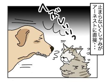 10072017_cat3mini.jpg