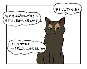 12062017_cat1mini.jpg