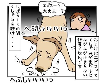 15052017_cat4mini.jpg