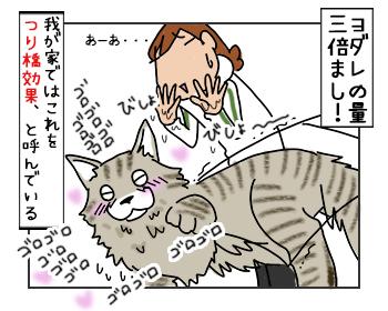16052017_cat4mini.jpg