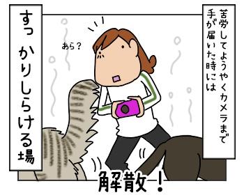 17052017_8mini.jpg