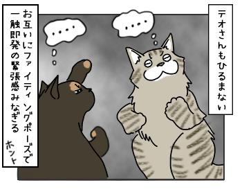 17052017_cat3mini.jpg