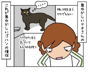 18052017_cat1mini.jpg