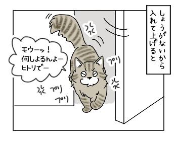 19062017_cat2mini.jpg