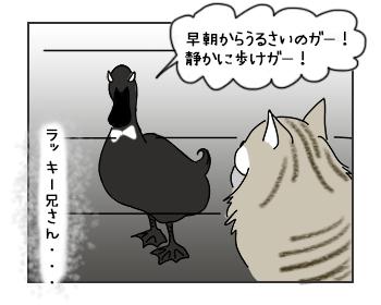20062017_cat3mini.jpg