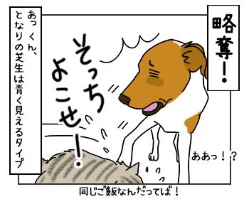 25052017_cat4mini2