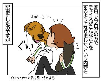 21062017_cat1mini.jpg
