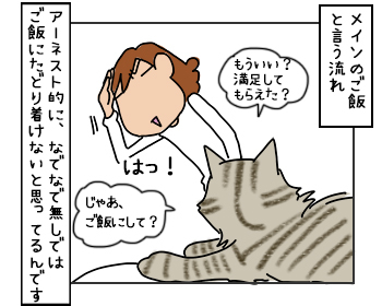 22052017_cat2mini.jpg