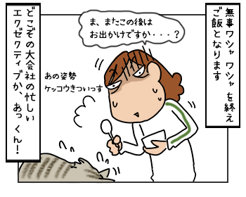 22052017_cat5mini.jpg