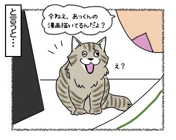 23062017_cat2mini.jpg