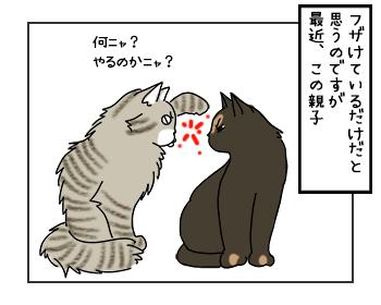 24052017_cat1mini.jpg