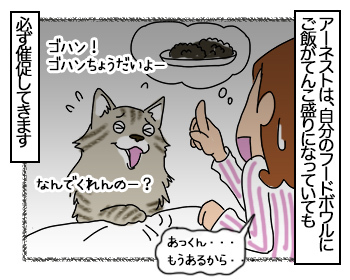 28062017_cat1mini.jpg