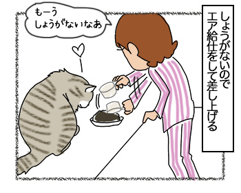 28062017_cat3mini.jpg