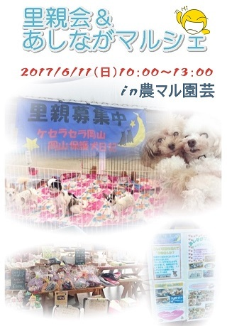2017-6-11-asinaga-poster.jpg