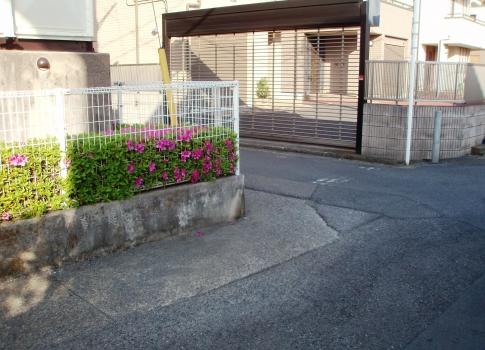 P505031.jpg