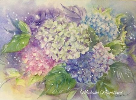 紫陽花 絵