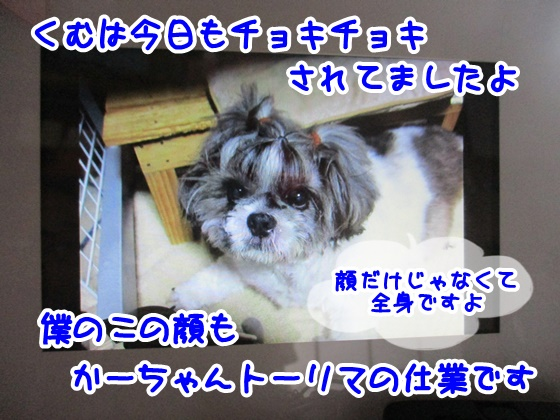 0503-08_20170503163900f61.jpg