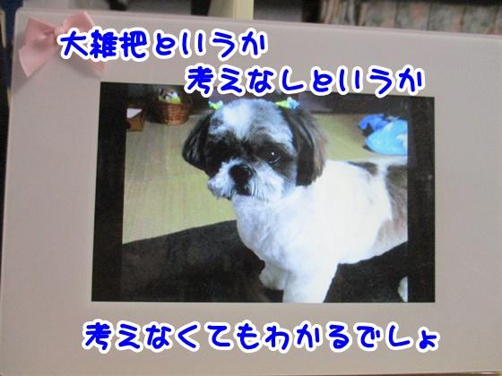 0504-08_20170504193841b60.jpg