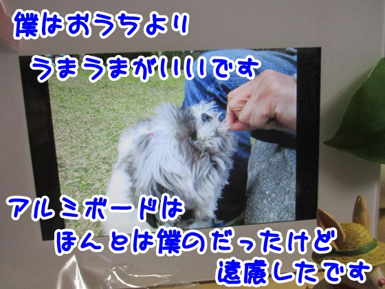 0514-01_20170514194732216.jpg