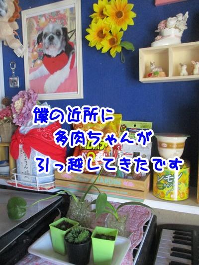 0523-01_20170523150631420.jpg