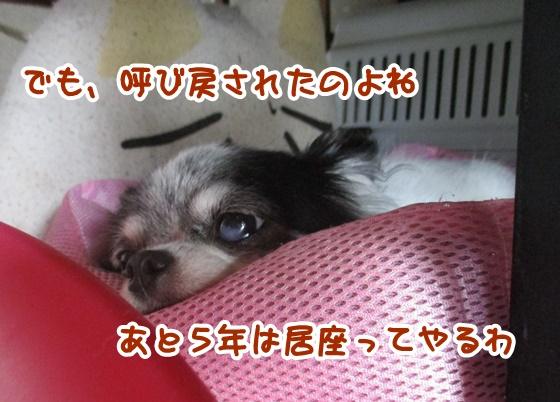 0708-04_201707081532521db.jpg