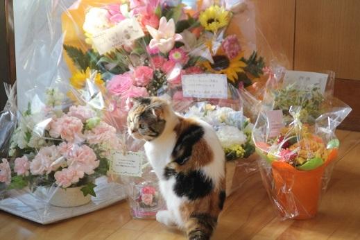 お花とジューク