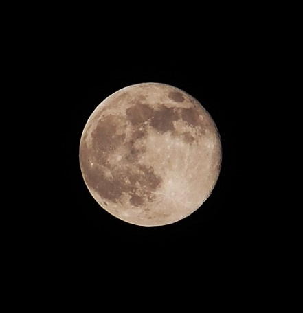 P5110008 今夜は満月